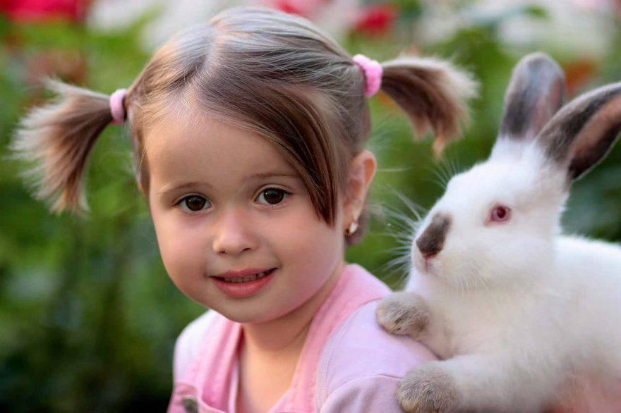 conigli e bambini