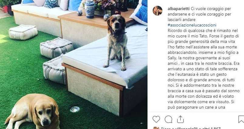 Alba Parietti cani