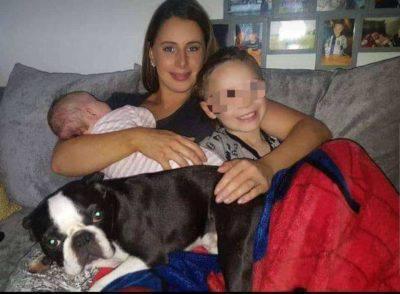 famiglia Boston terrier