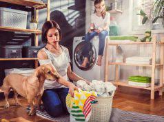 casa pulita cane