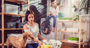 casa pulita con cane animali