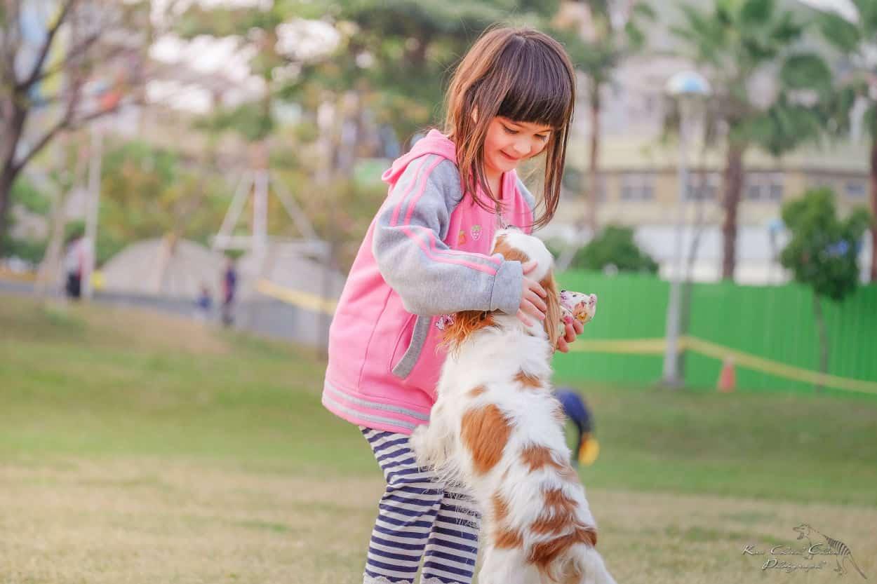 insegnare bambino portare cane guinzaglio