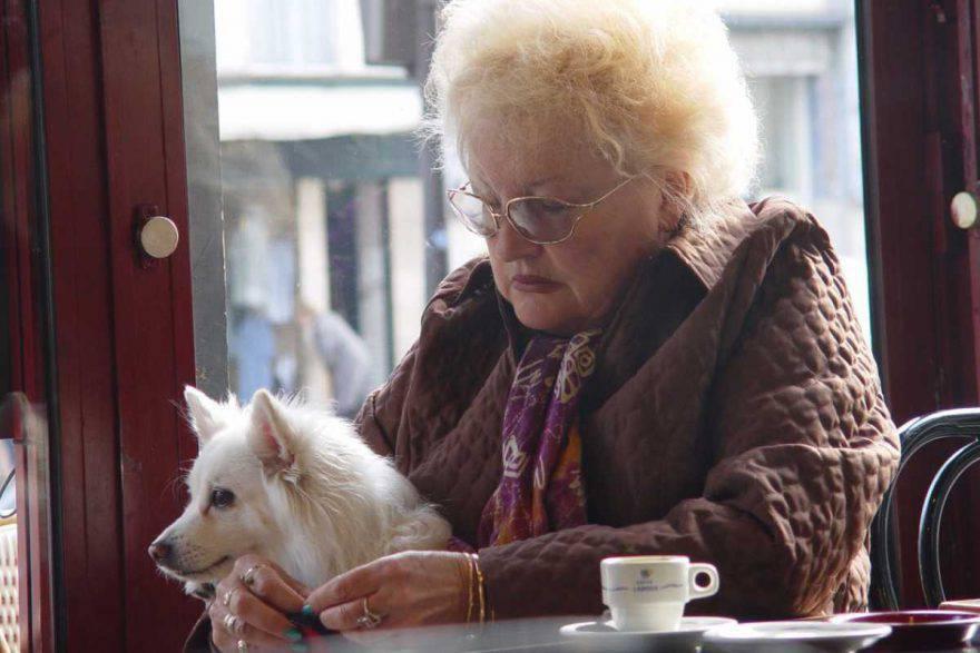 anziani animali