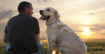 uomo e cane