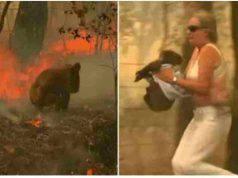 La donna che fugge dall'incendio portando in braccio il koala (Foto Facebook)