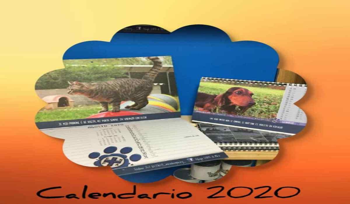 Calendario Rifugio Enpa 2020 (Foto Facebook)