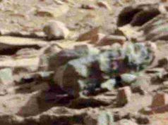 Insetti e altre specie su Marte, la scoperta