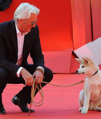 Cani protagonisti di film Hachiko cane storia vera