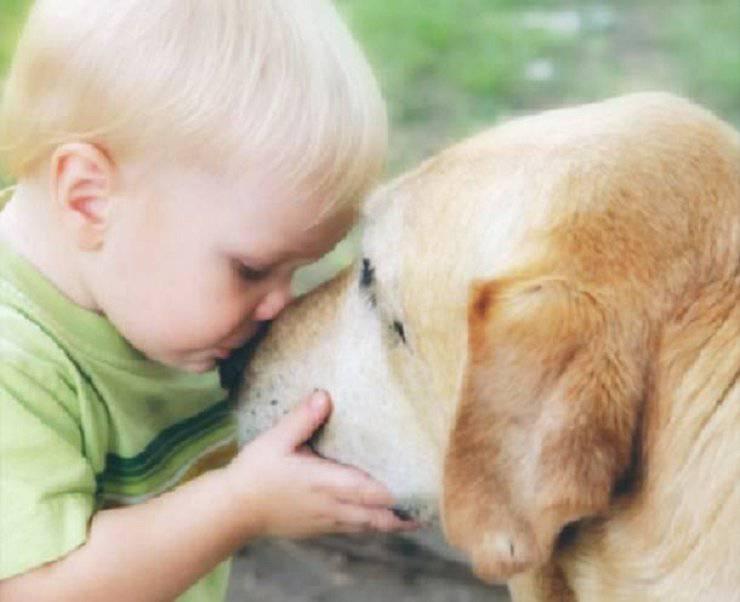 cane amore uomo