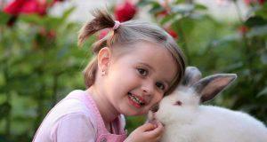 curiosità sul coniglio