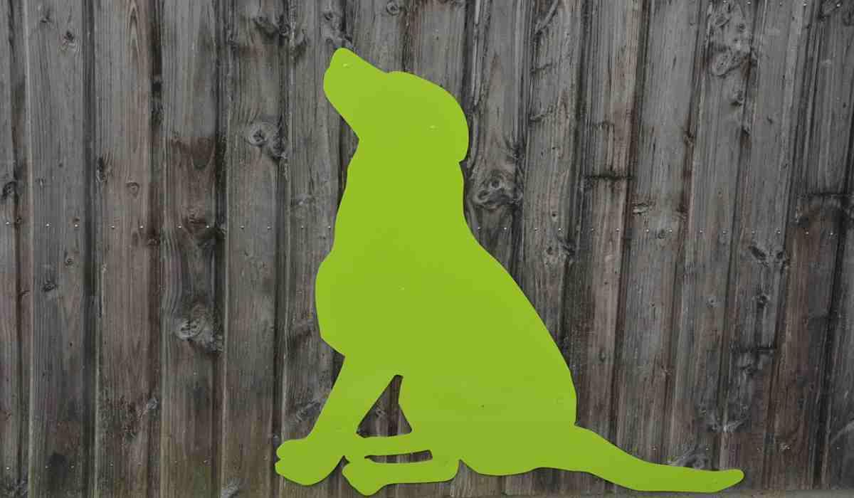Il cane dipinto di verde (Foto Pixabay)