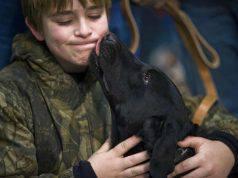 cane può baciare