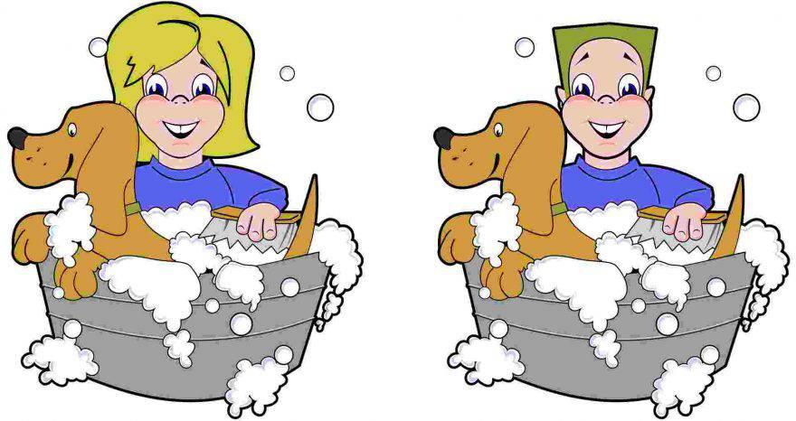 Primo bagno al cucciolo