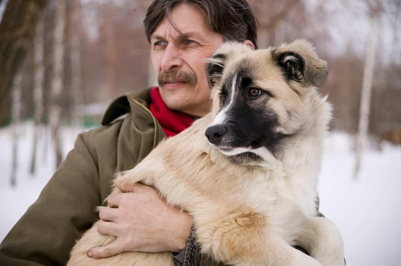 Cucciolo e padrone (Foto Pixabay)