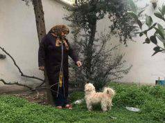 Donna porta a spasso il cane