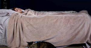Il gatto ti sveglia la mattina presto o di notte