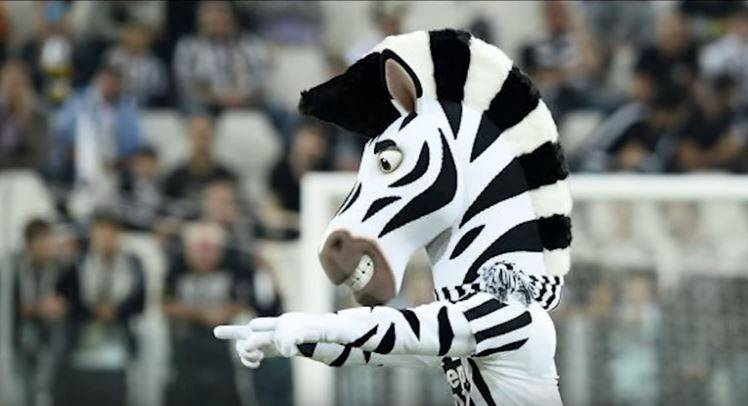 Animali e squadre di calcio