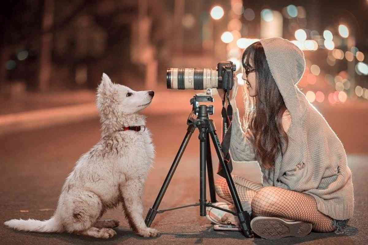 Come fotografare un cane