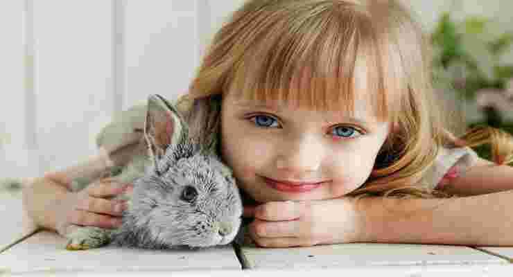 Un coniglio per amico (Foto Pixabay)