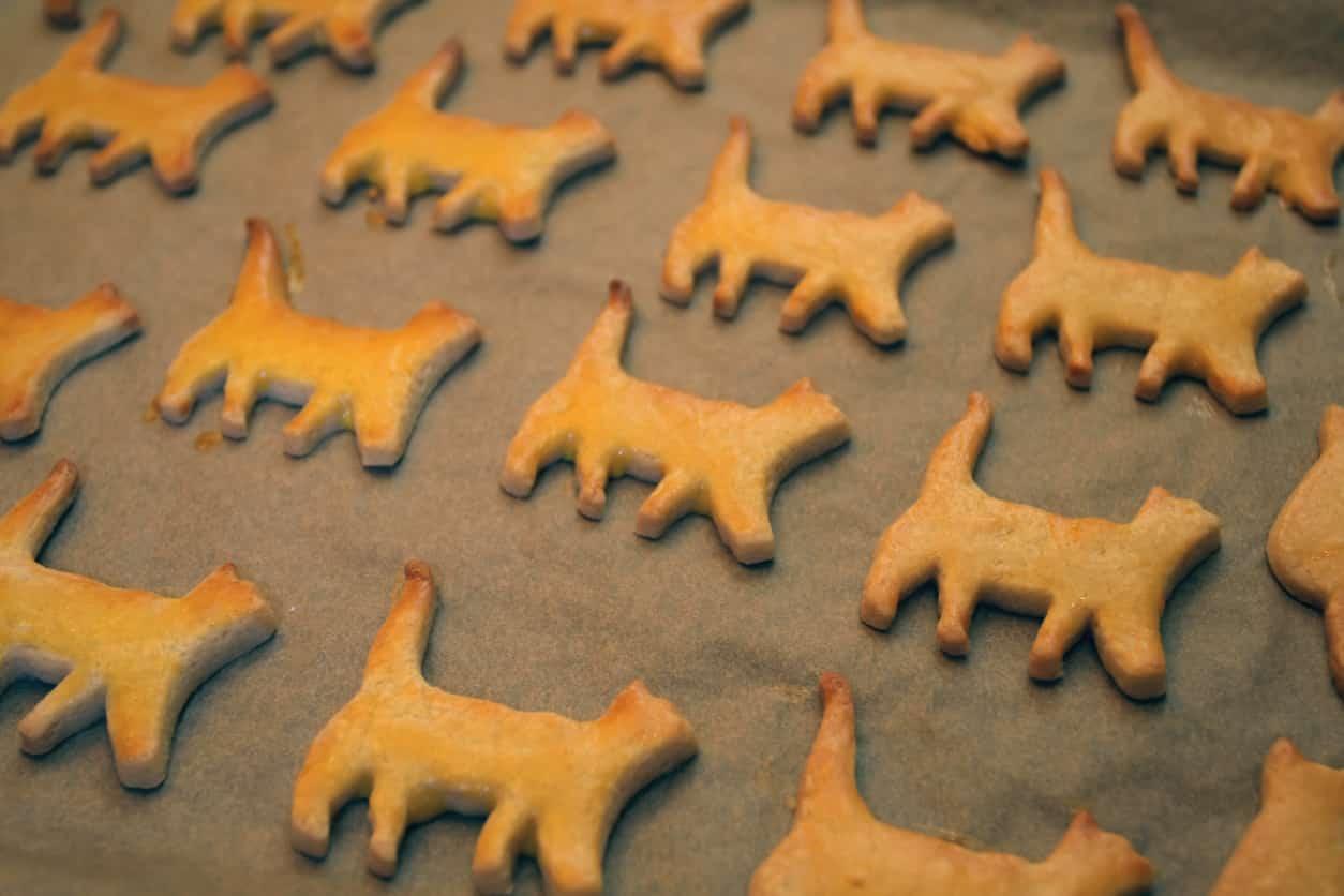 ricetta biscotti gatto capodanno
