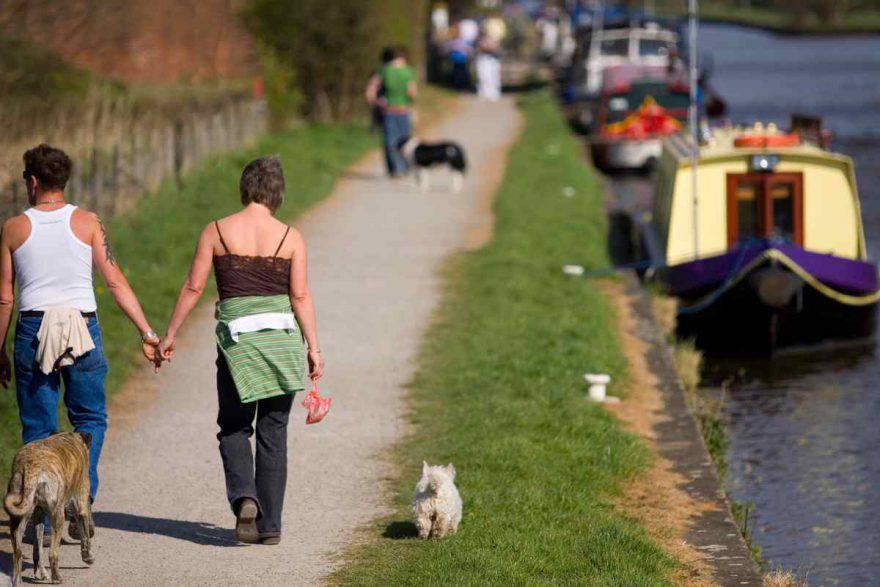 cane a passeggio con padrone