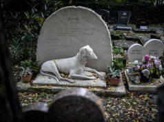 sepoltura animali milano