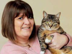 animali sentono tumori gatto cancro