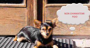 nomi cani usati serie tv vip