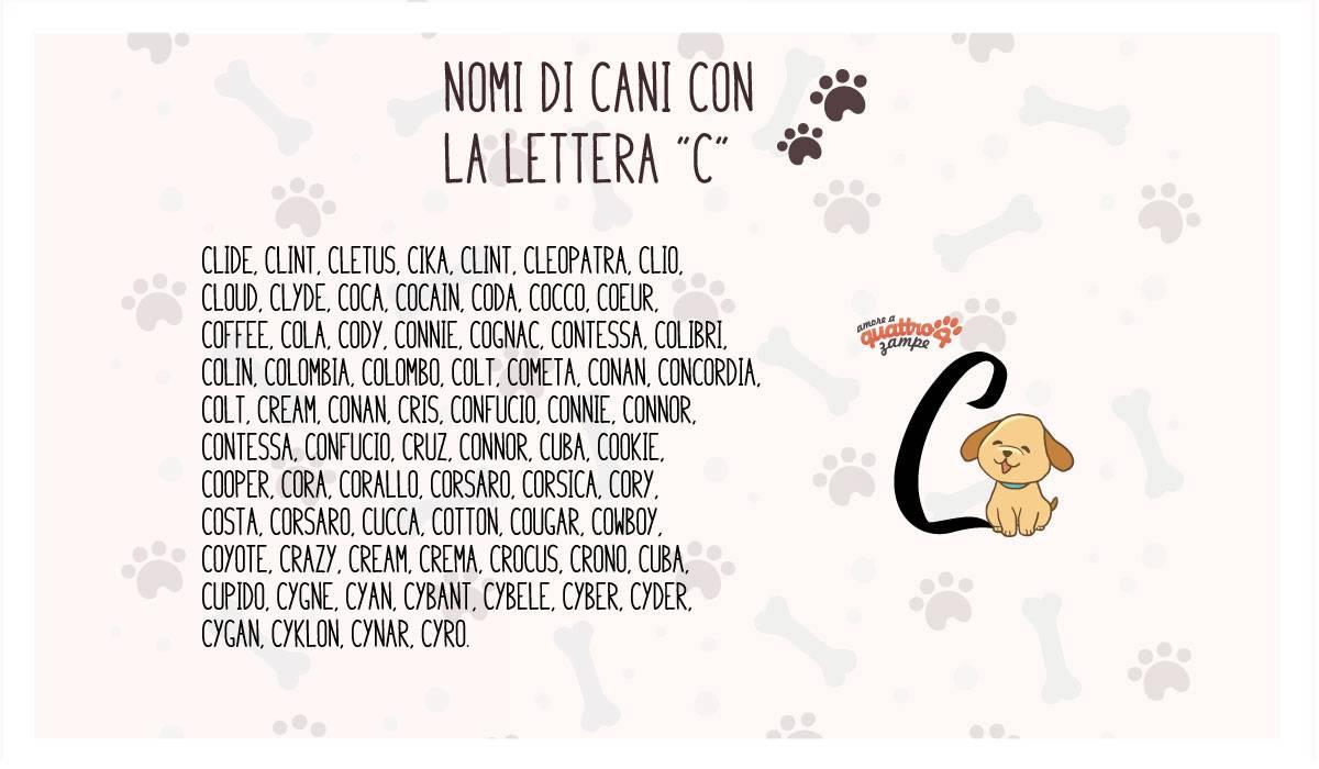 infografica nomi cane con la C