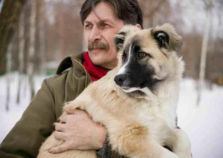 L'amore tra un cane e il suo padrone (Foto Pixabay)
