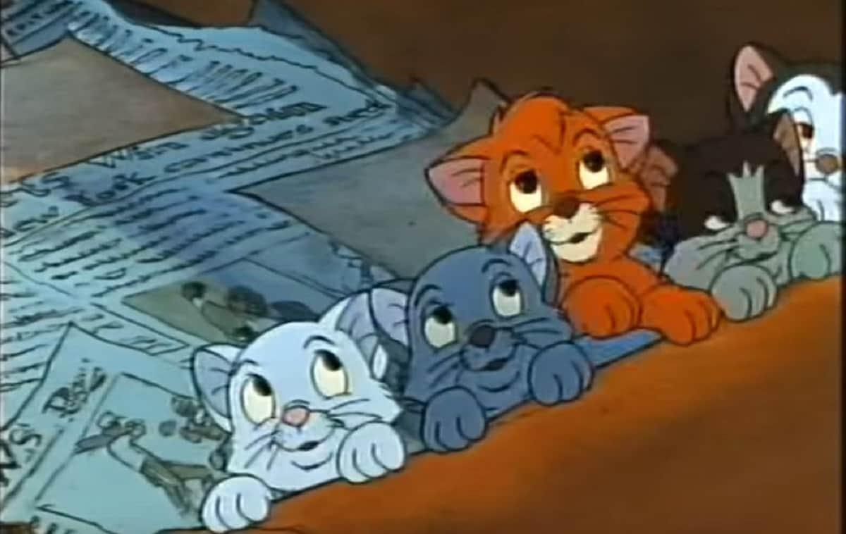 Nomi di gatti dei cartoni animati
