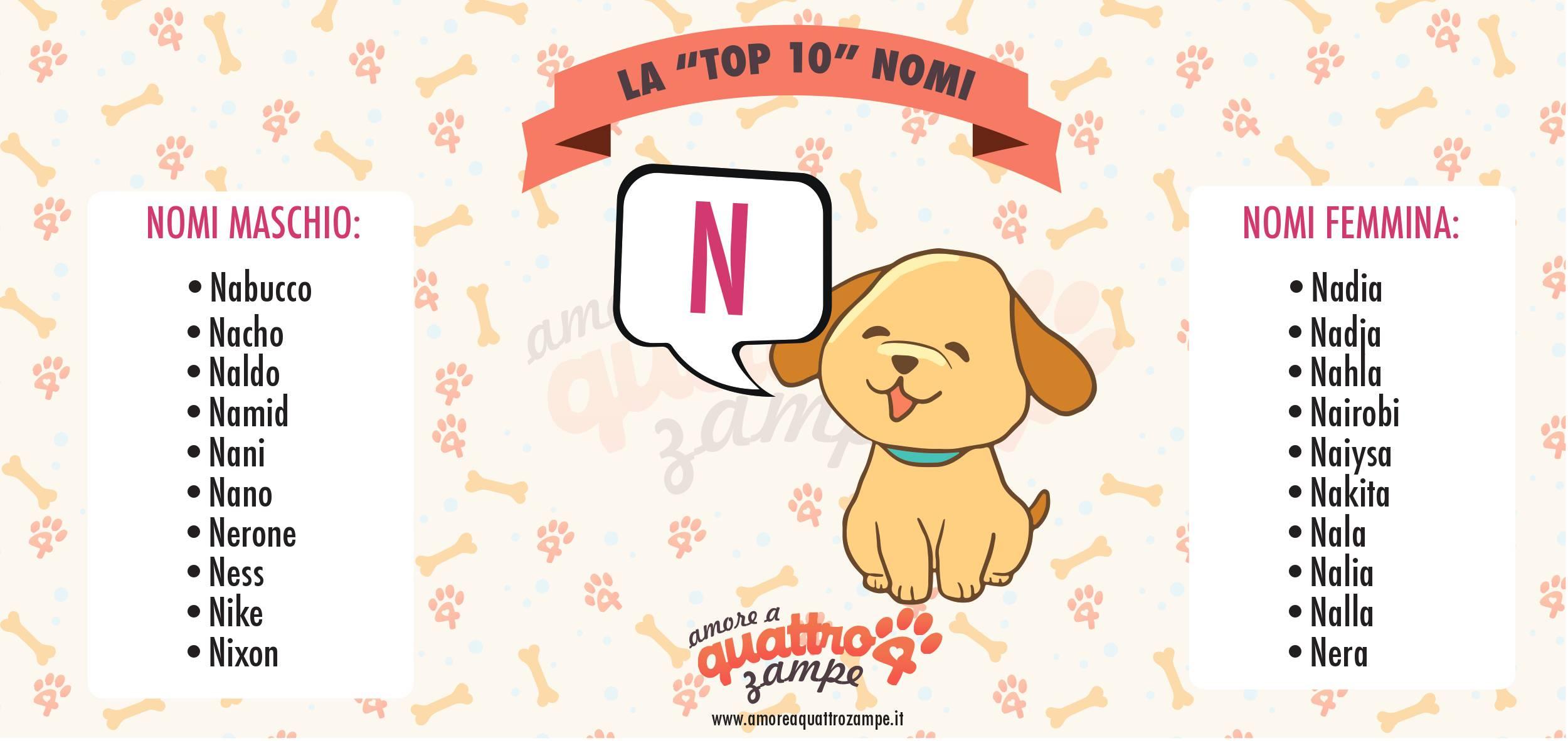 Infografica Top 10 nomi con la N