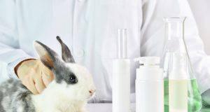 pododermatite nel coniglio