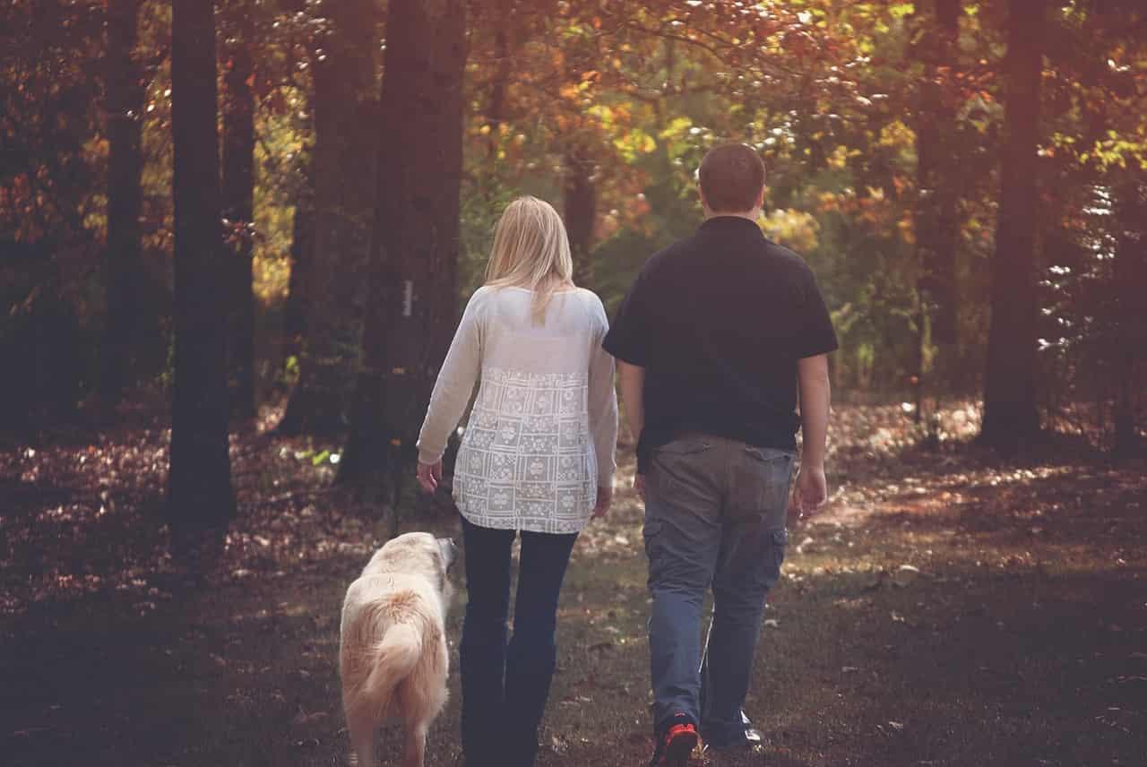Famiglia a spasso con Fido (Foto Pixabay)