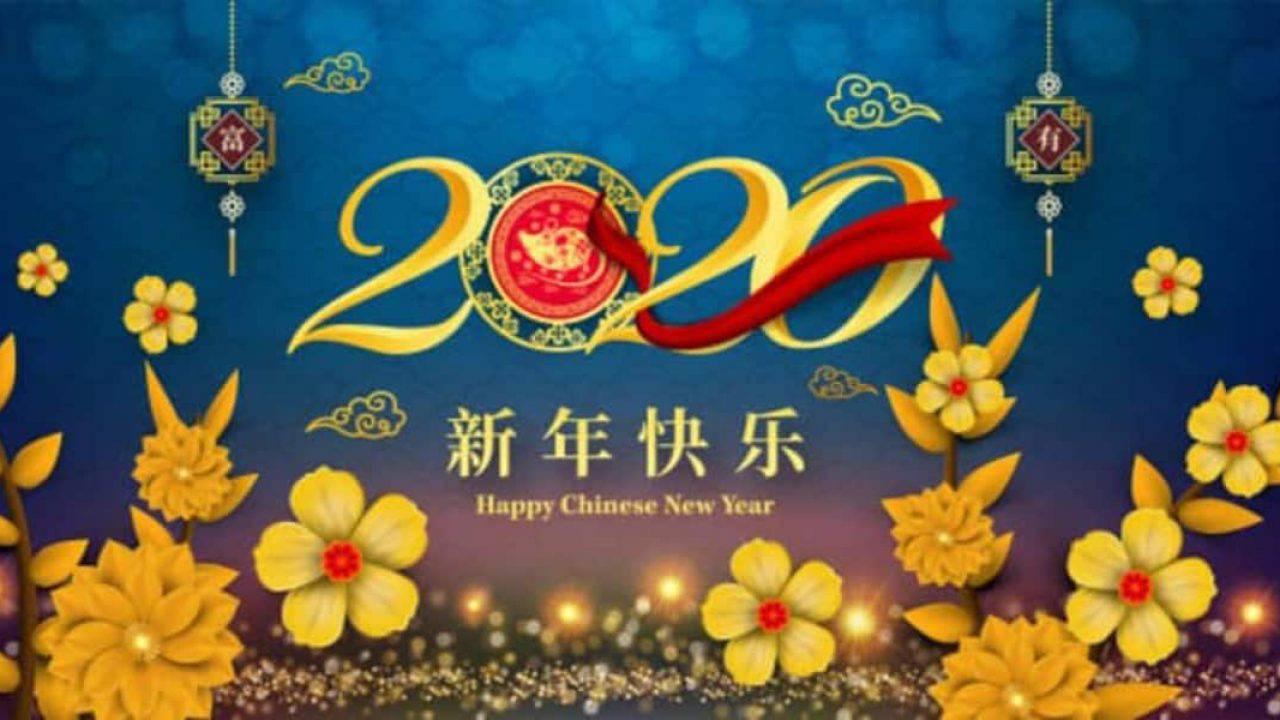 Oroscopo Cinese Maiale 2019 oroscopo cinese il 2020 è l'anno del ratto di metallo