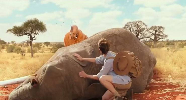 Gli animali dei film di Checco Zalone: l'Elefante di Quo Vado