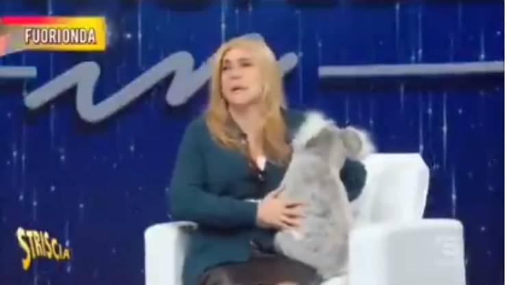 Mara Venier domenica in koala deepfake