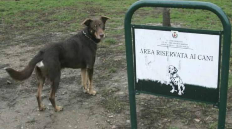 Area cani Milano (Foto di dominio pubblico)