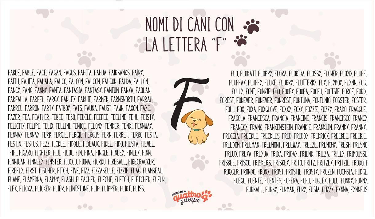 infografica nomi cane con la F
