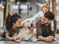 addestrare cane in famiglia