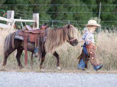 bambini età equitazione cavallo