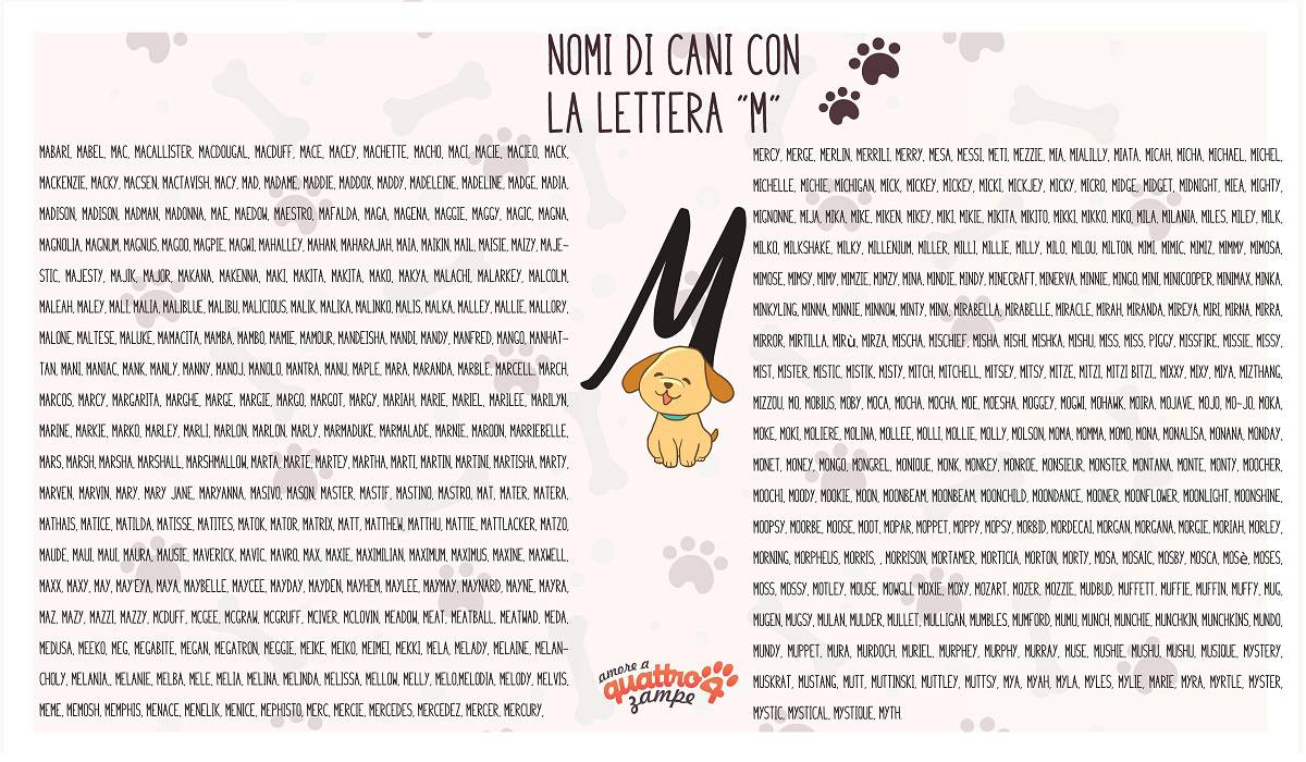 infografica nomi cane con la M