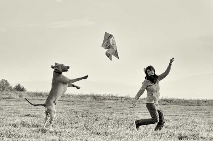 Padrone e cane che giocano (Foto Pixabay)
