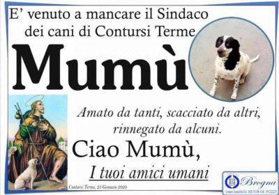 manifesto funebre cane
