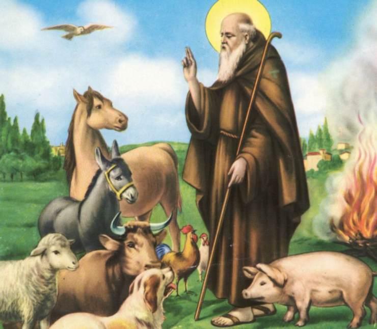 benedizione degli animali