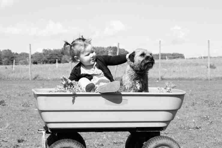 Bambina gioca con il cane (Foto Pixabay)