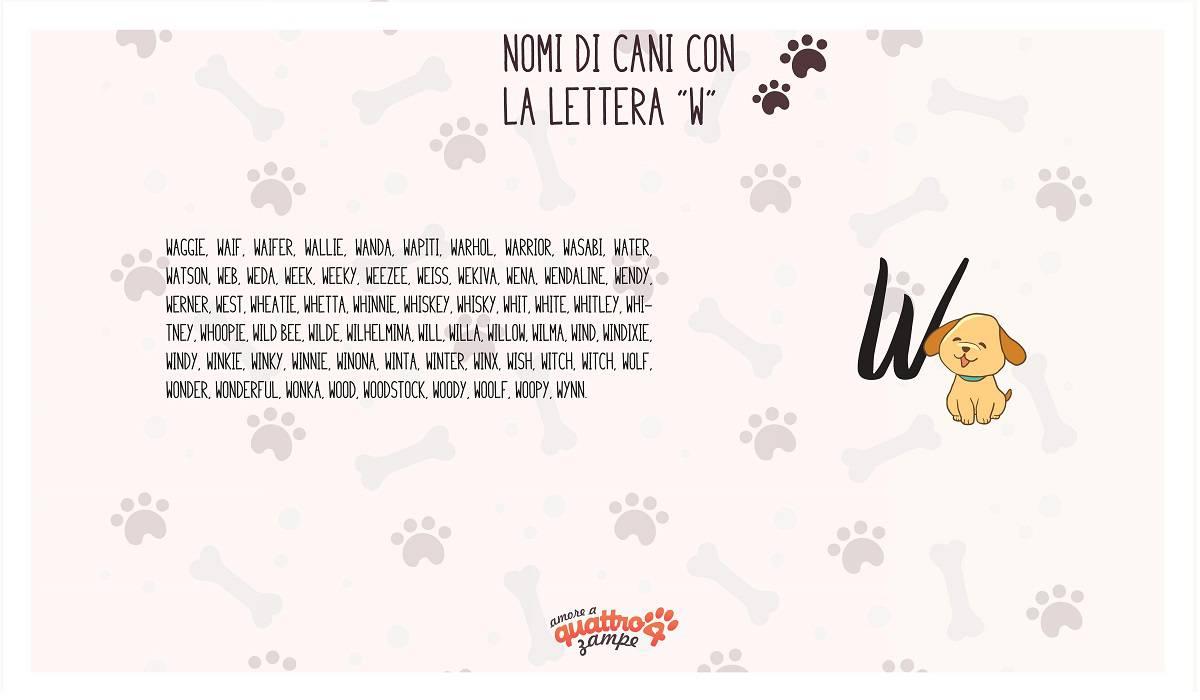 infografica nomi cane con la W
