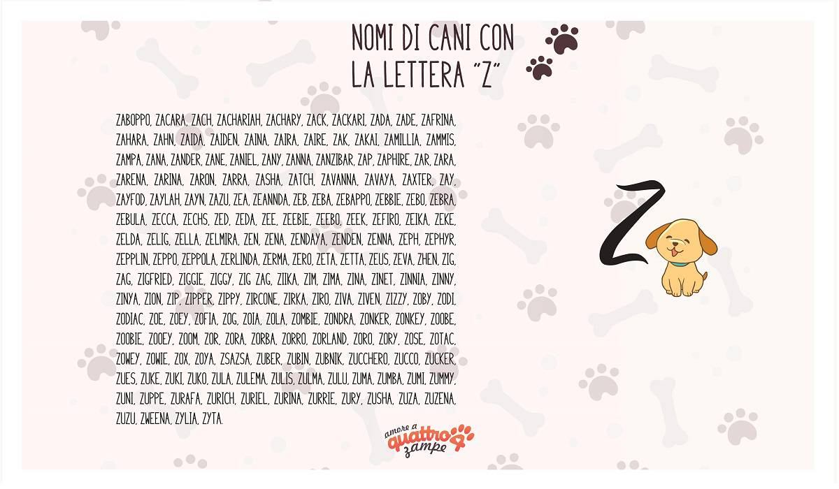 infografica nomi cane con la Z