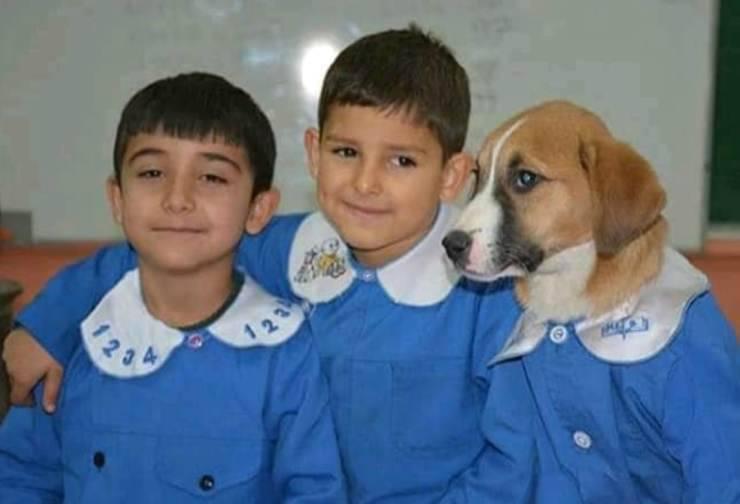 Il cane e gli amici di scuola (Foto Facebook)