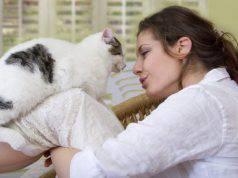 Vivere con un gatto